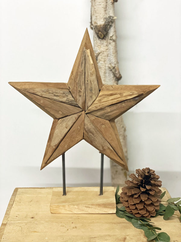 Stern Holz 1
